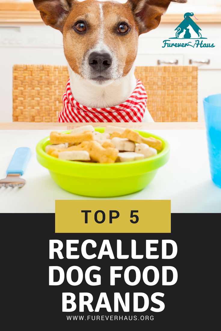 Get critical recall alerts by email whenever The Dog Food Advisor becomes aware of a dog food or dog treat recall event within the US or Canada